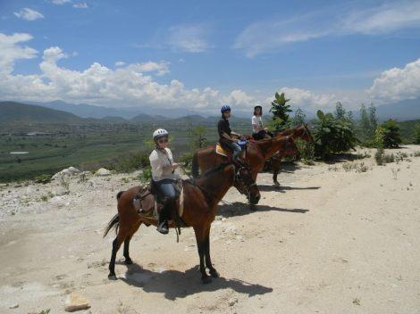 horse-back