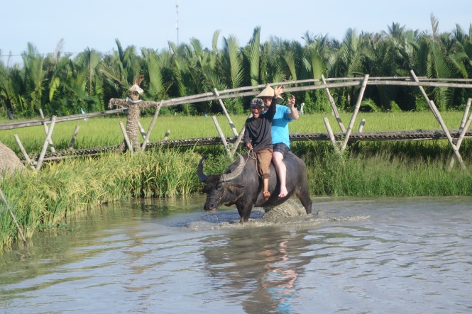 Riding a water buffalo in Hoi An