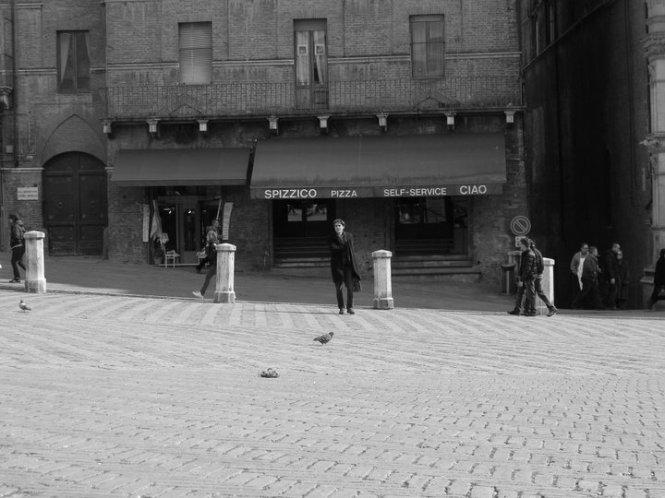 Sienna Italy Photo